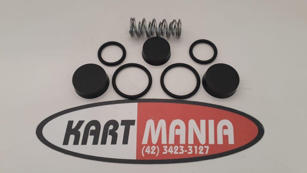 Kit Reparo De Freio Completo Mini Até 2005